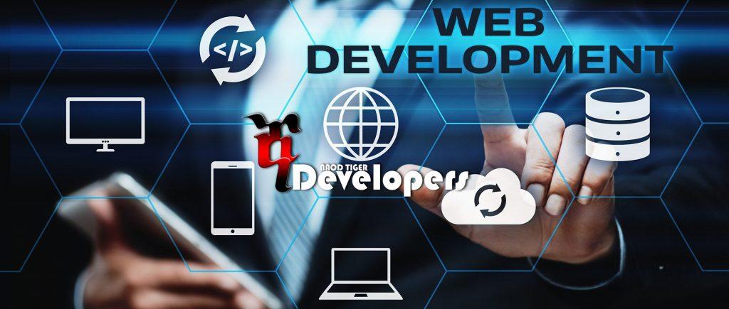 website designing and hosting in Ethiopia Yegna Developers